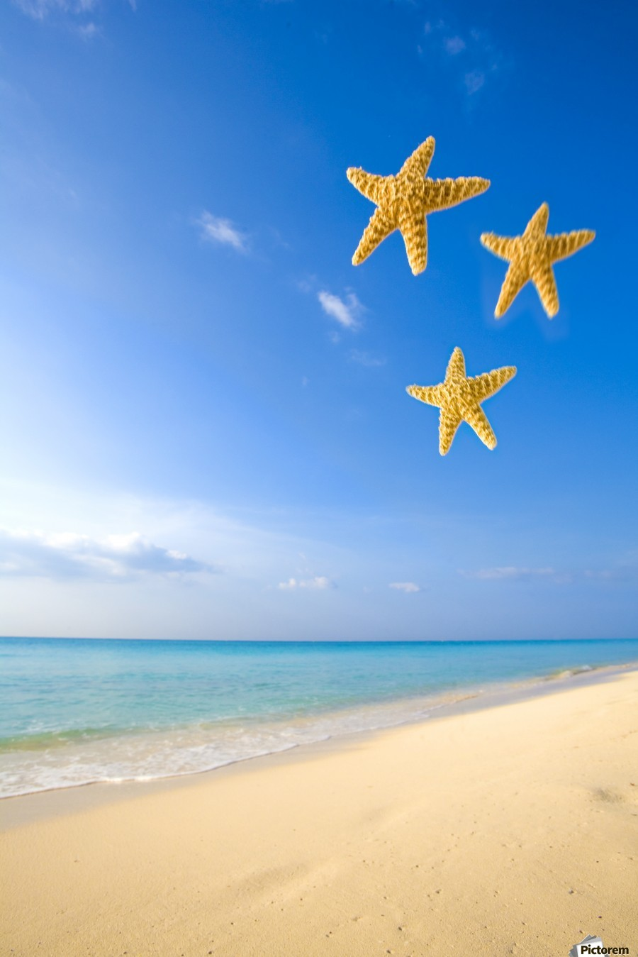 Starfish Falling In Front Of The Ocean  Print