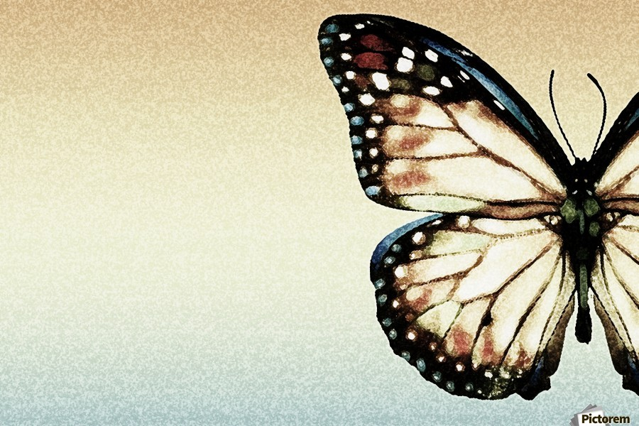 Artistic Butterfly  Print