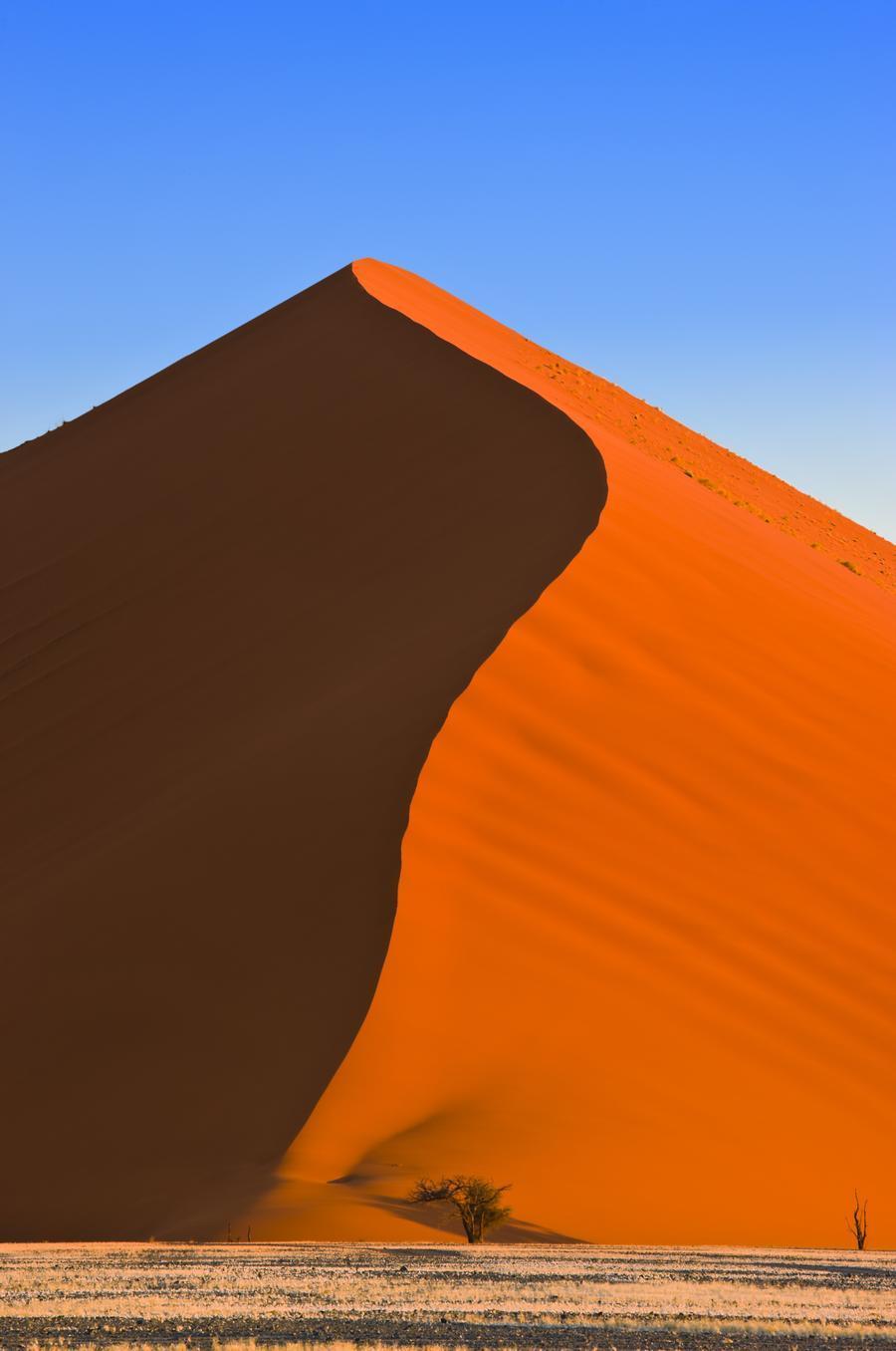 Sand Dune, Sossusvlei, Namib Desert, Namibia, Africa  Imprimer