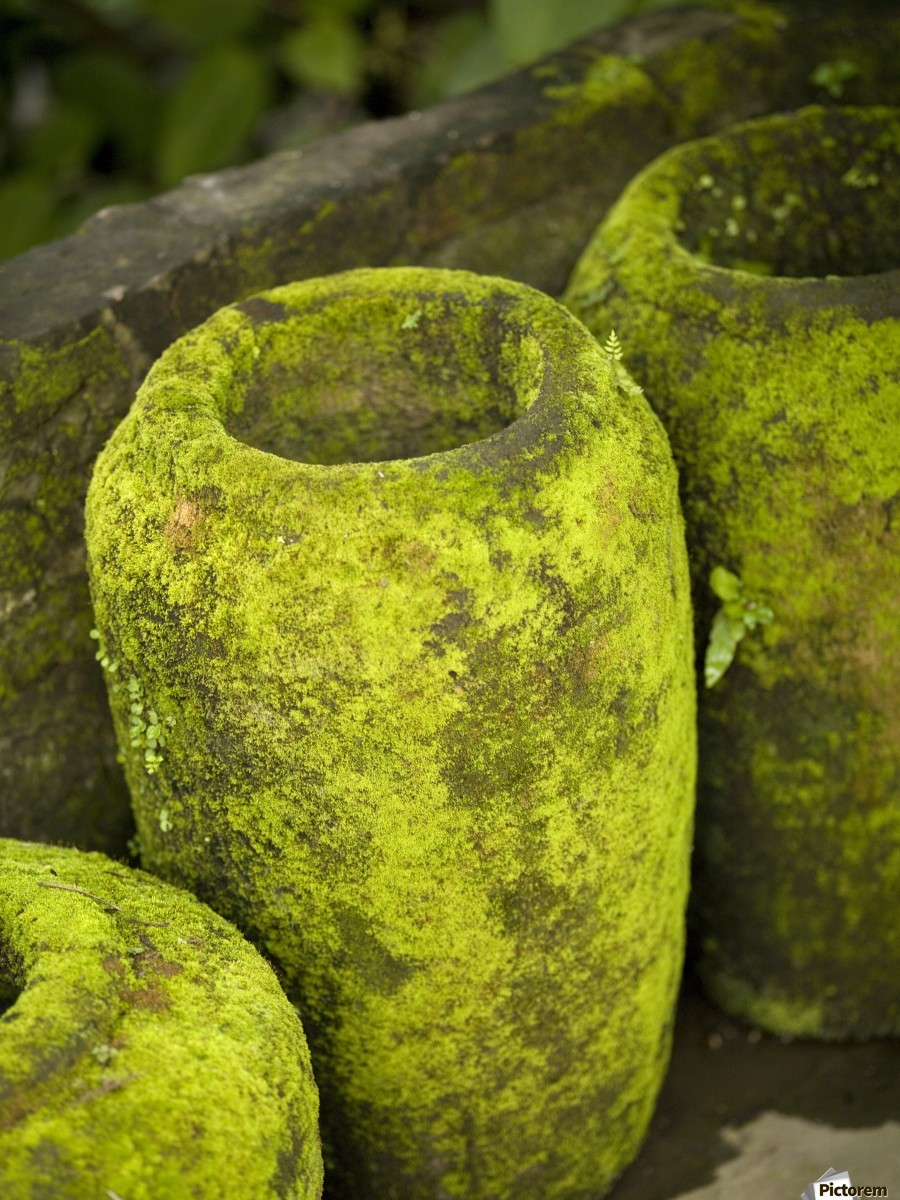 Moss Covered Urns - PacificStock Canvas