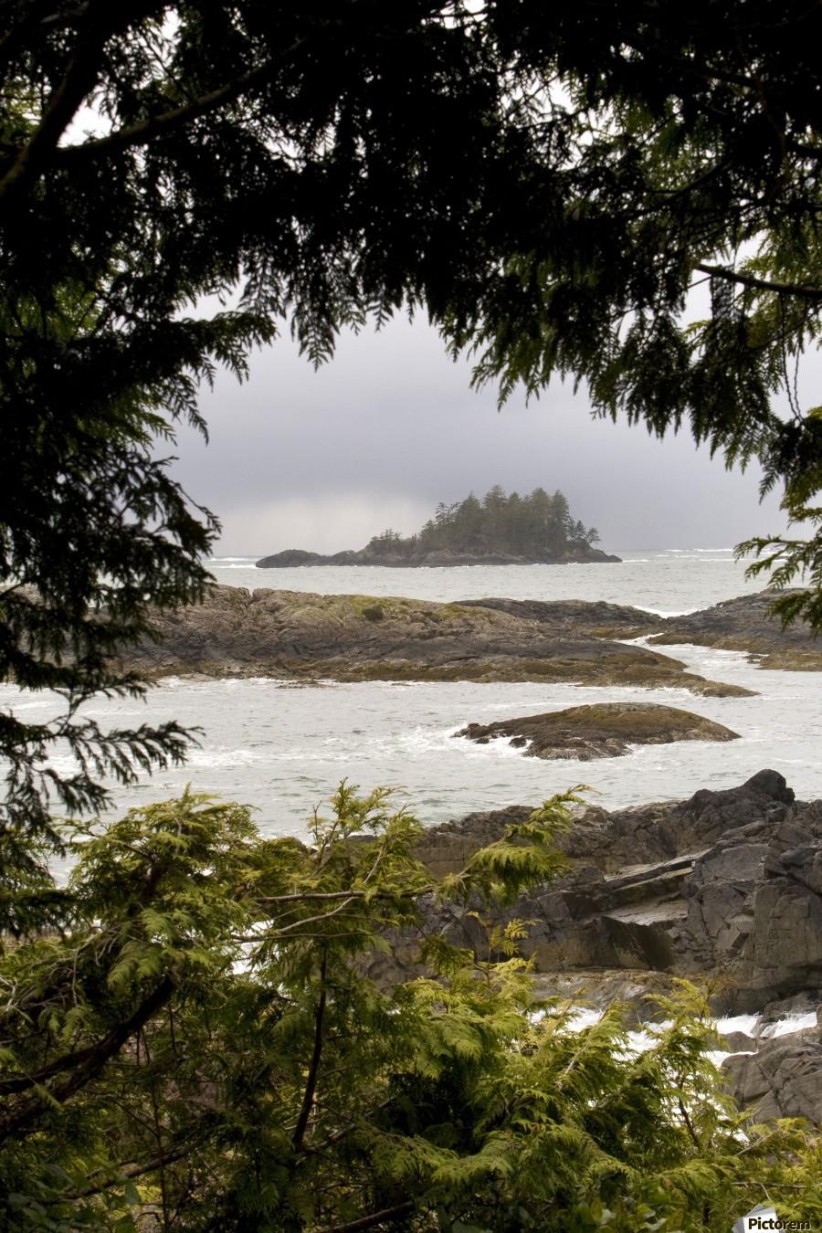 Coastal Scenery, Tofino, British Columbia, Canada  Print