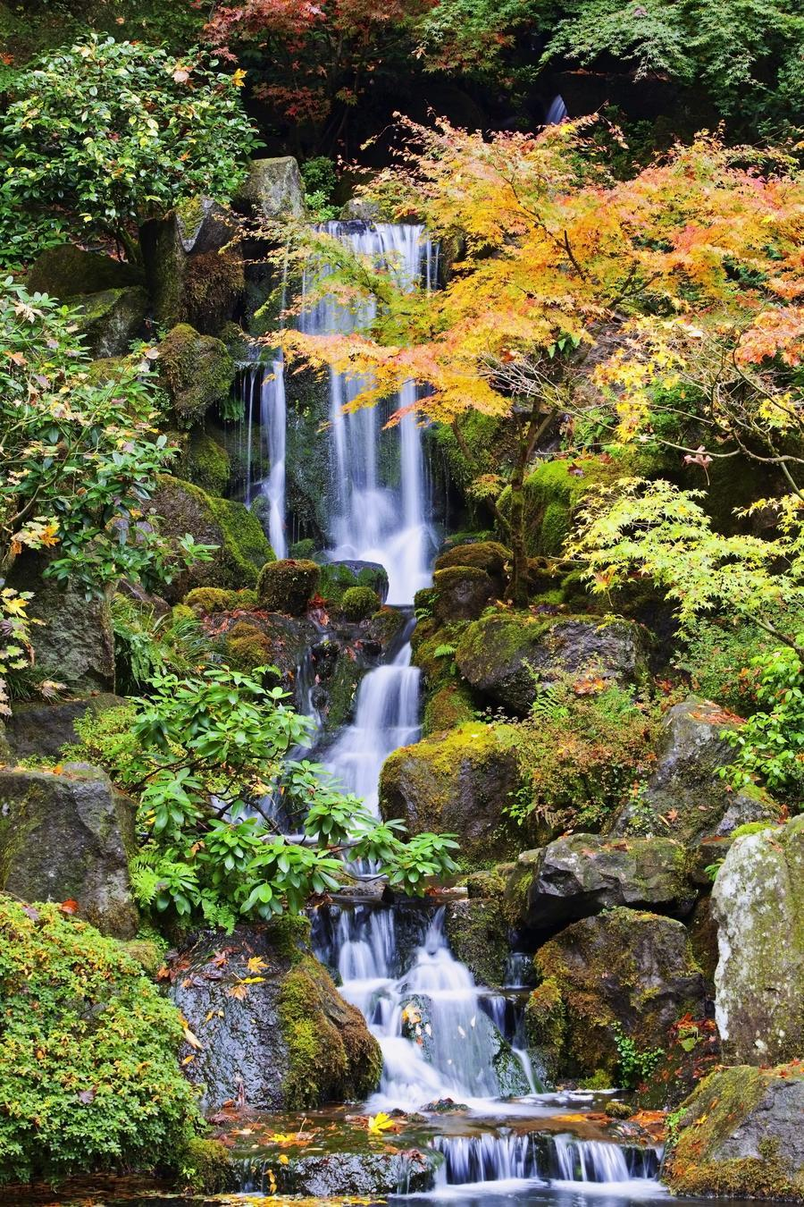 Portland, Oregon, United States Of America; A Waterfall In The Portland Japanese  Garden In Autumn