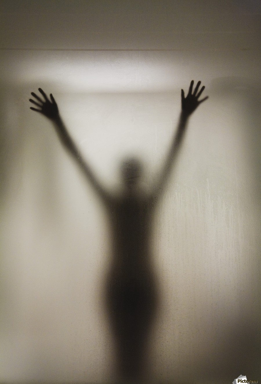 Silhouette Of A Nude Woman Behind The Glass Door Shower Stall