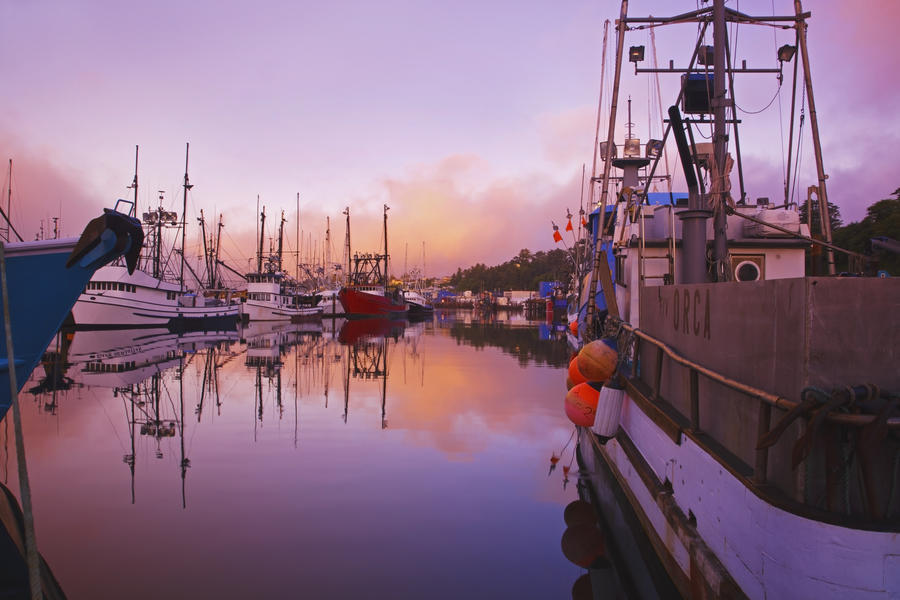 Sunrise through the morning fog and fishing boats in for Newport harbor fishing