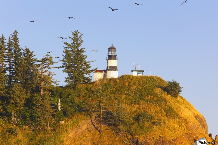 Birds In Flight Over Cape Disappointment Lighthouse; Ilwaco, Washington, United States of America  Print