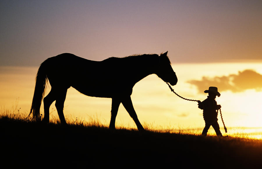 Hawaii Silhouette Of Boy Leading Horse Along Grassy Hillside At