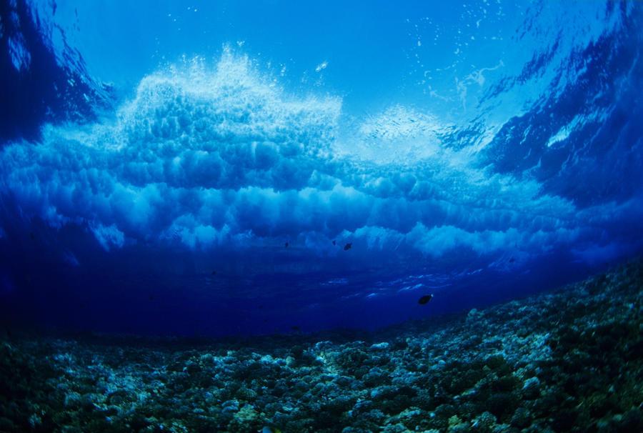 Hawaii Underwater View Of Wave Breaking Over Coral Reef