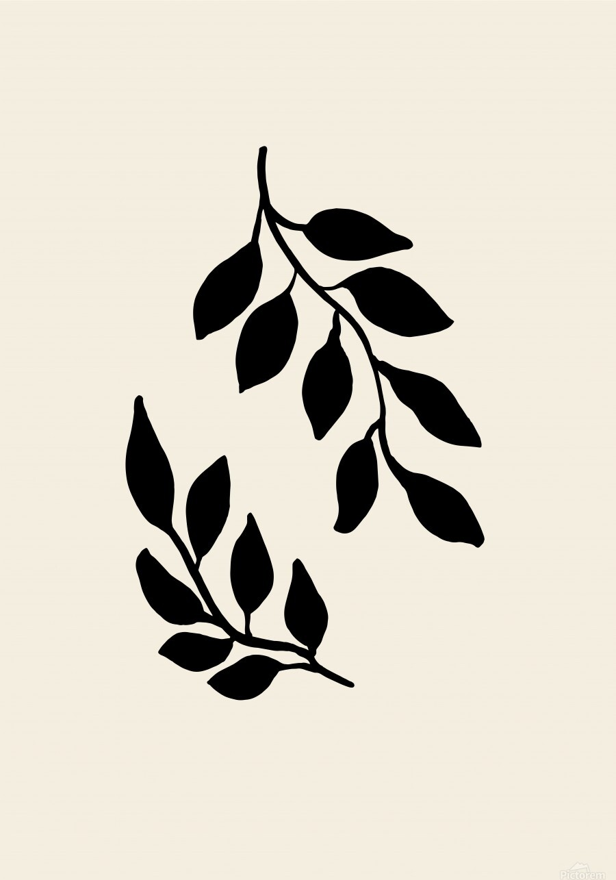 Black Twigs  Print