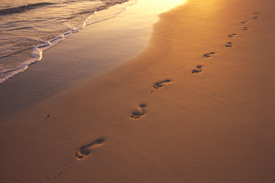 footprints in sand at sunset shoreline water b1452 pacificstock