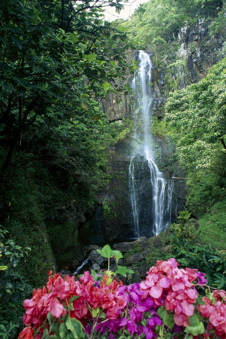 Hawaii Maui Wailua Waterfall And Rainforest