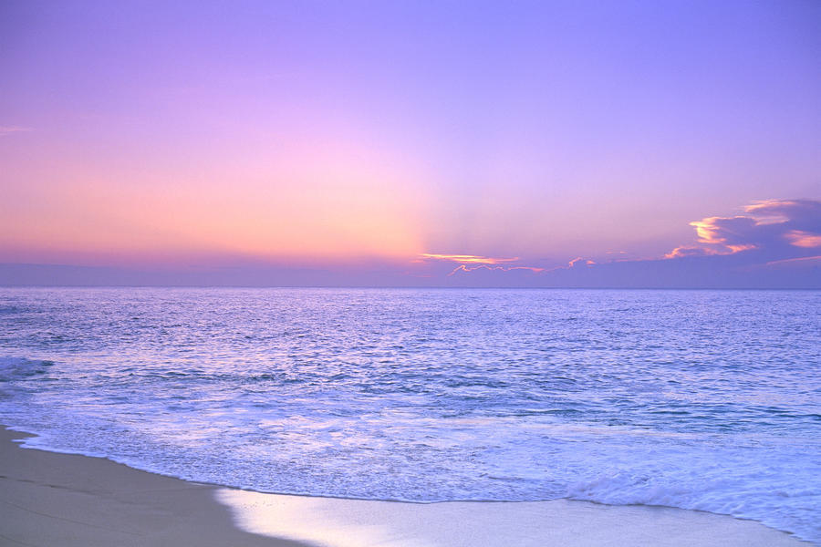 Lavender Sky With Hues Of Pink And Yellow, Shoreline Water To Ocean C1699  Print
