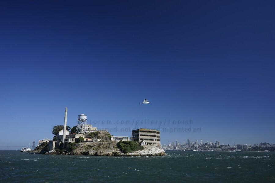Alcatraz   The Rock @ San Francisco Bay  Print