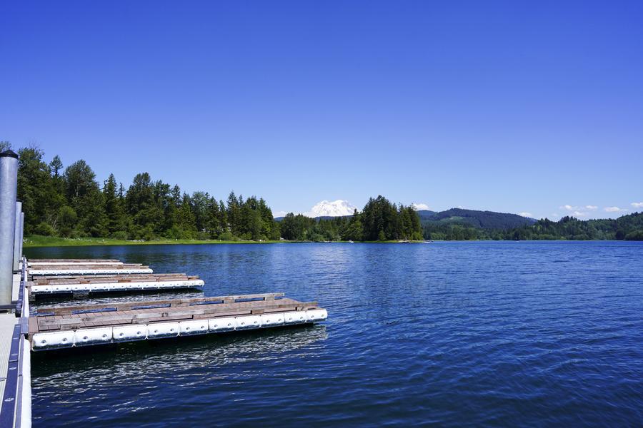 Alder Lake and Mount Rainier Pacific Northwest United States  Print