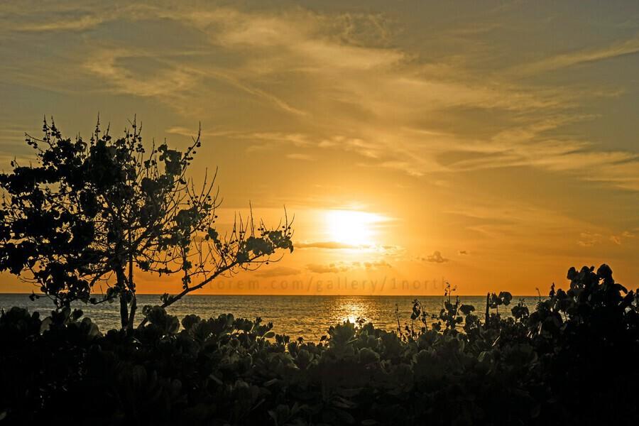 Delicate - Sunset Hawaiian Islands  Print