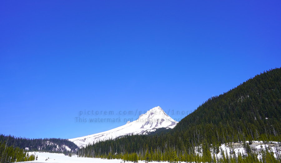 Clear Day in the Mountains - Mount Hood  - Oregon  Print