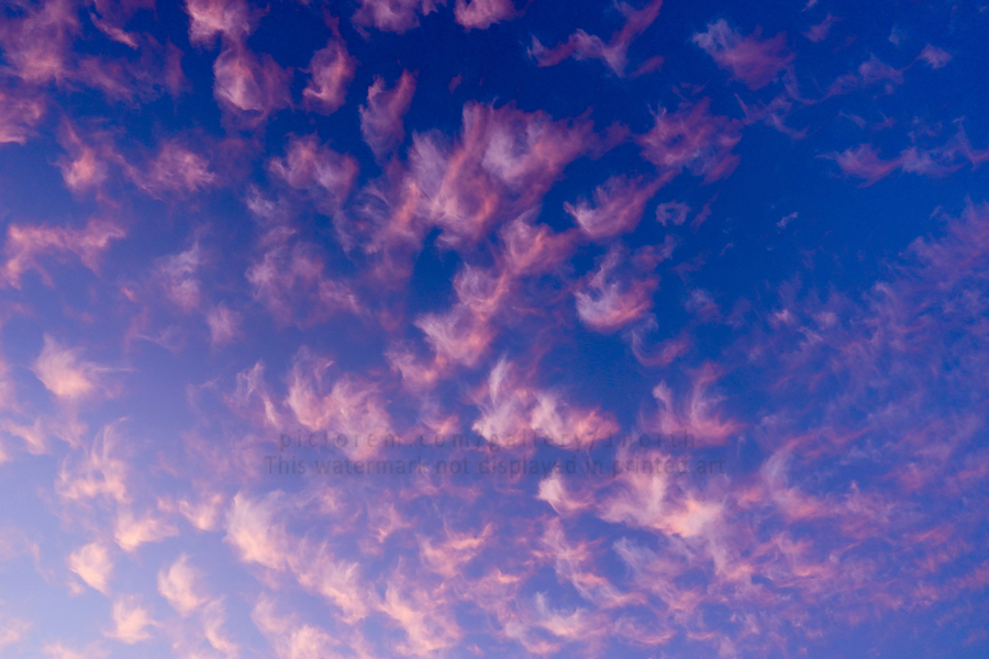 Pink and White Cotton Candy Skies over the Pacific Northwest   Abstract Expressionist Robert Stanek Original  Print