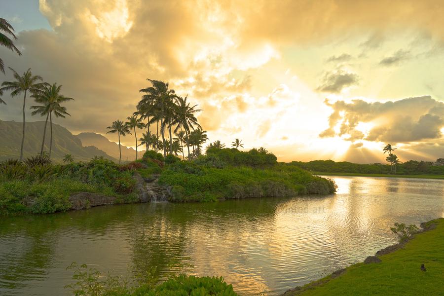 Shadows and Light as the Sun Sets in Kauai 1 of 2  Print