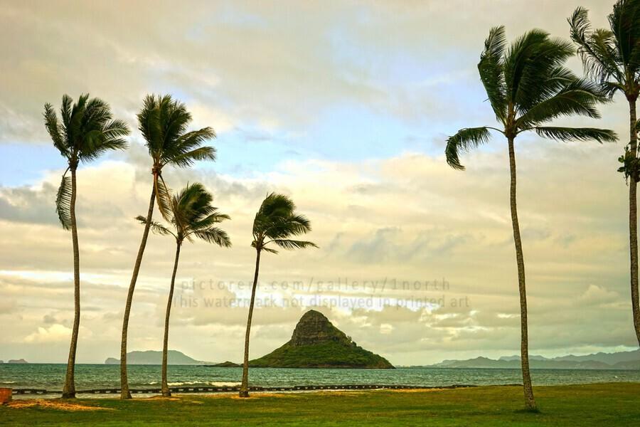 The Island of Mokoli  i from Oahu at Sunset  Print