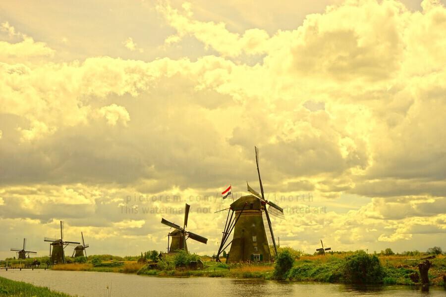 Windmills at Sunset - Netherlands  Print