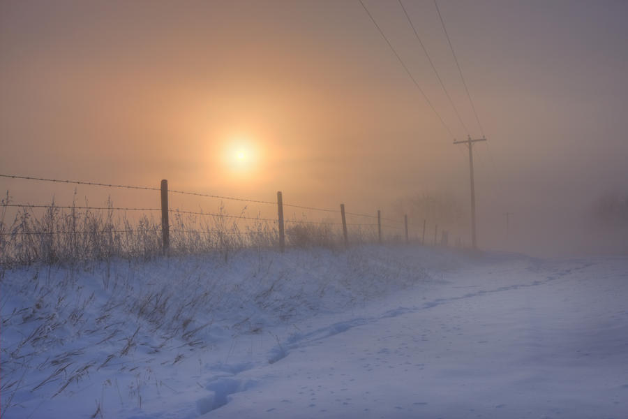 Foggy Winter Sunrise Over Barbed Wire Fence And Hydro Lines, Alberta Prairie  Print