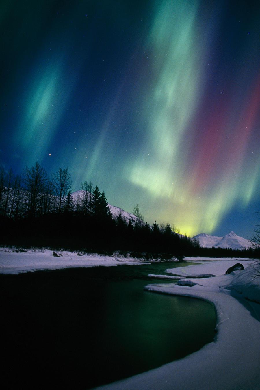 "Blue Northern Lights  Canvas Wall Art /""20x30/"""