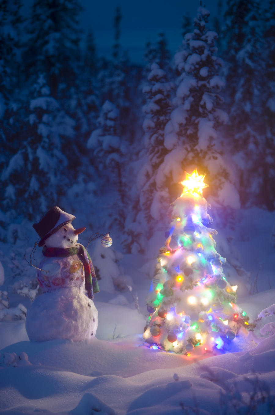snowman stands in a snowcovered spruce forest next to a decorated christmas tree in wintertime - Snow Covered Christmas Trees