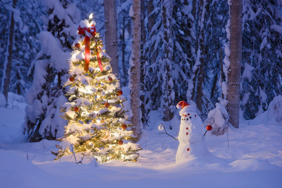 Christmas Forest.Snowman With Santa Hat Hanging Ornaments On A Christmas Tree In A Snow Covered Birch Forest In Southcentral Alaska Pacificstock Canvas Artwork
