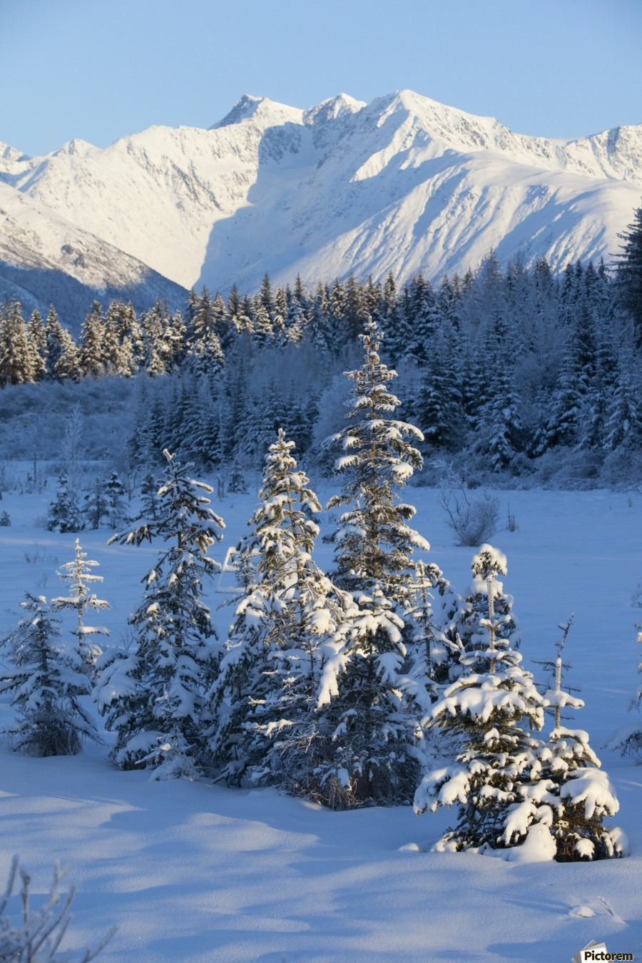 Scenic View Of Chugach Mountains And Snowcovered Landscape, Southcentral Alaska, Winter  Print