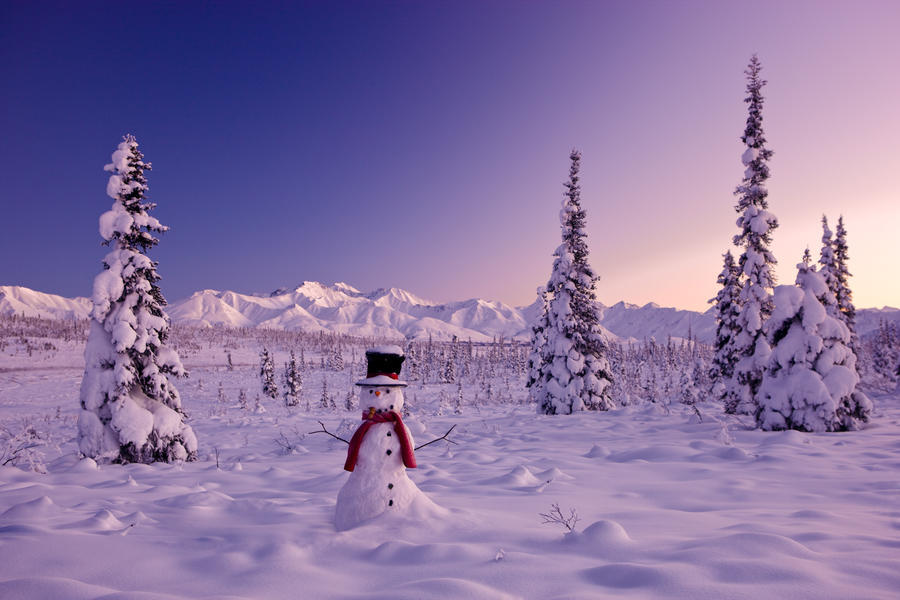 Snowman At Sunset, Snow Covered Spruce Trees, Winter, Chugach Mountains In The Background, Glenn Highway, Alaska Usa.  Print