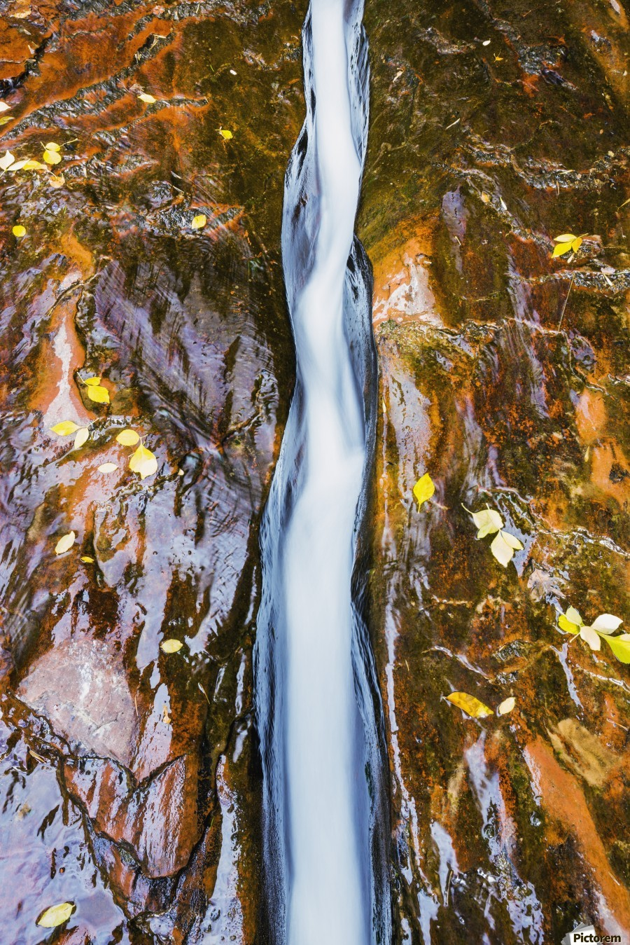 Water flowing in beautiful stone rivet along the subway trail in zion national park;Utah, united states of america  Print