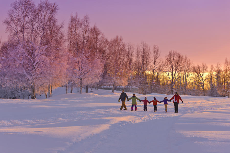 Family Group, Holding Hands, Walk On A Snow Path At Sunset With A Birch Forest In The Background, Russian Jack Springs Park, Anchorage, Southcentral Alaska, Winter  Print