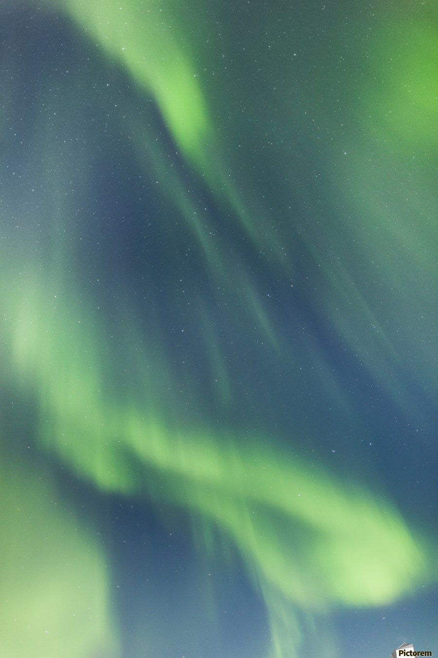 Northern Lights In The Sky Above The Chena Lakes Recreation Area; Fairbanks, Alaska, United States Of America  Print