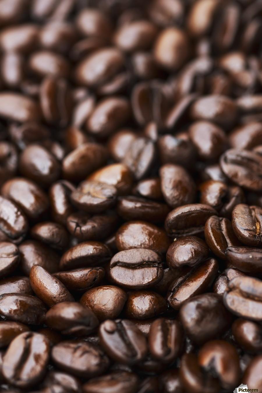 Medium dark roast Kona coffee beans close up; Holualoa, Big Island, Hawaii, United States of America  Print