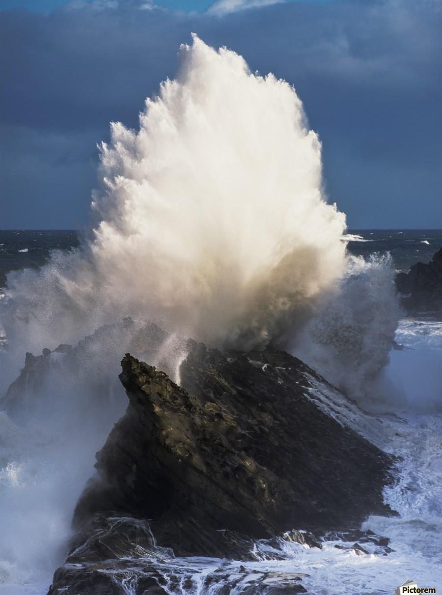 Surf erupts on the rocks at Shore Acres State Park; Charleston, Oregon, United States of America  Print