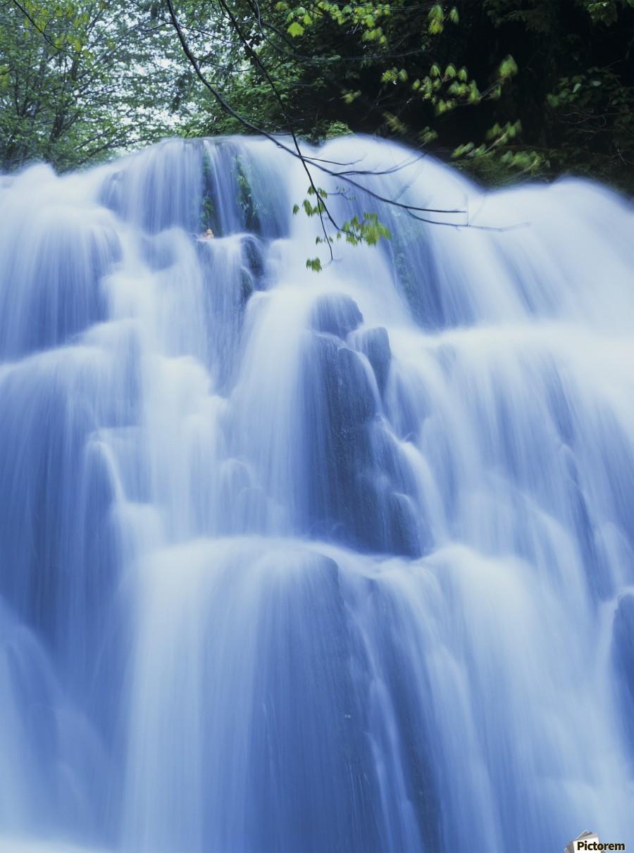 Sweet Creek waterfalls along the hiking trail; Mapleton, Oregon, United States of America  Print
