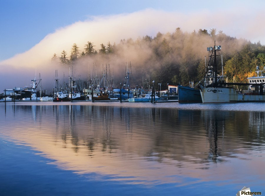 Boats dock at Winchester Bay; Oregon, United States of America  Print