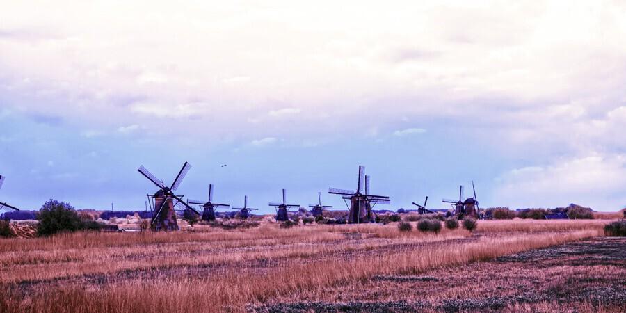 Wonderful Windmills  Print