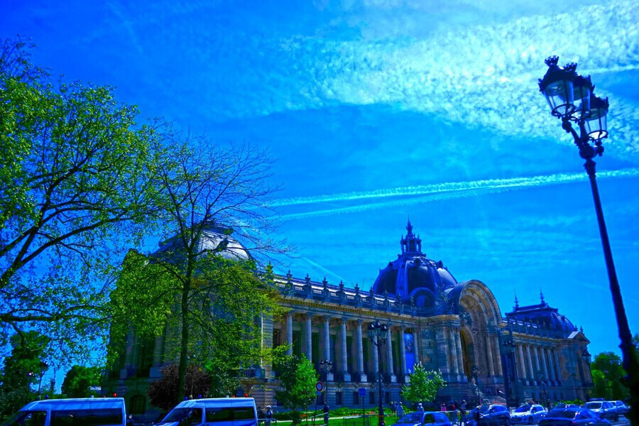 Petit Palais 8th Arrondissement Paris  Print