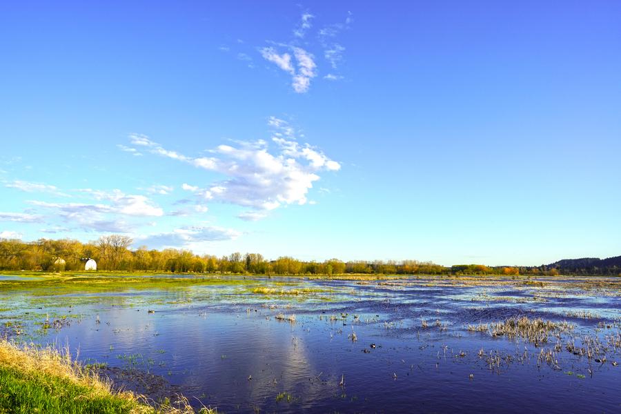 Beautiful Day at the Estuary  Print