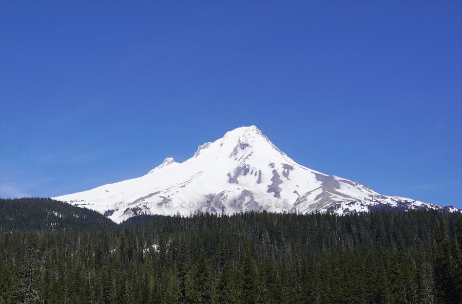 Blue Skies over Mount Hood  Print