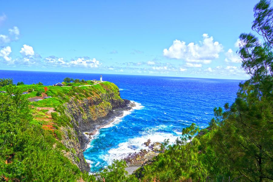 Kilauea Lighthouse in Spring on the Island of Kauai  Print