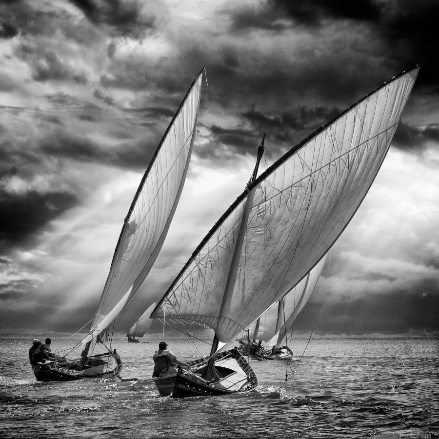 Sailboats and Light  Print