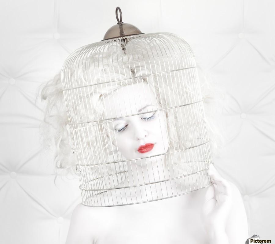 birdcage love  Print