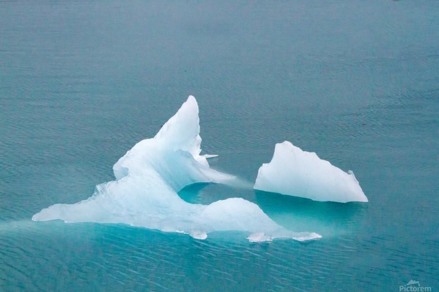 Iceberg Images - Alaska   Print