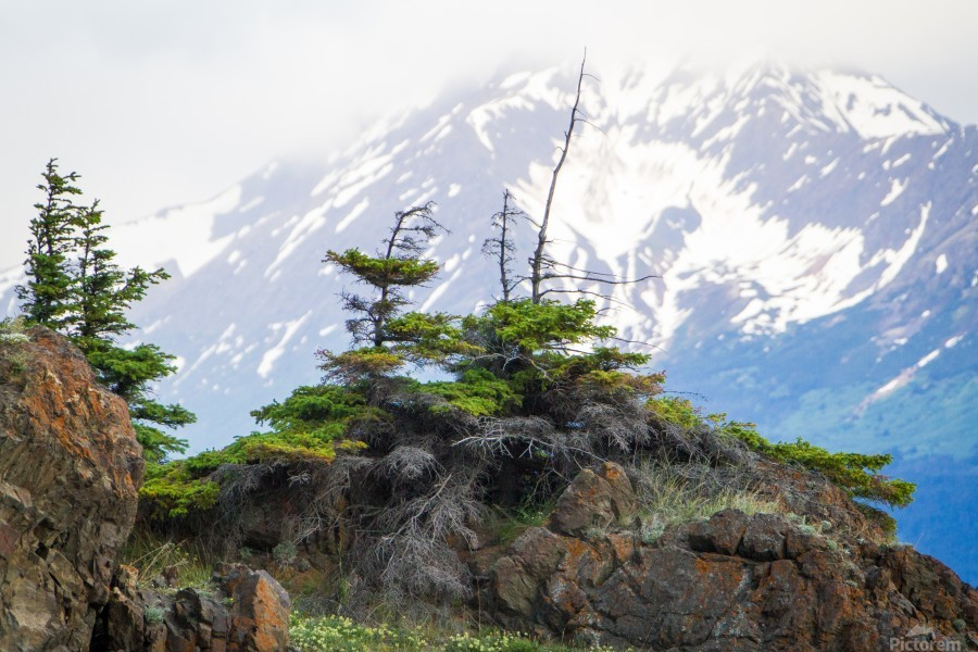 Alaska Scenery Pictures - Cliffs and Mountains  Print