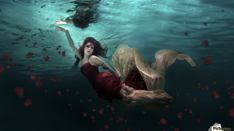 Ocean of Roses  Print