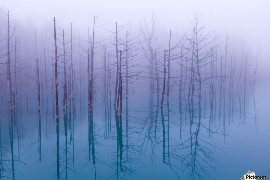 Misty Blue Pond  Print