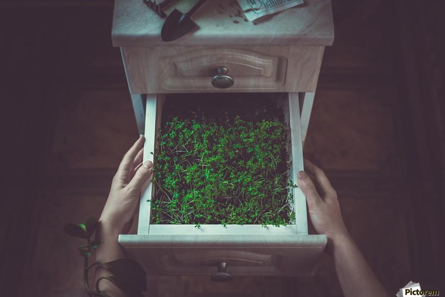 Avoir la main verte  Print