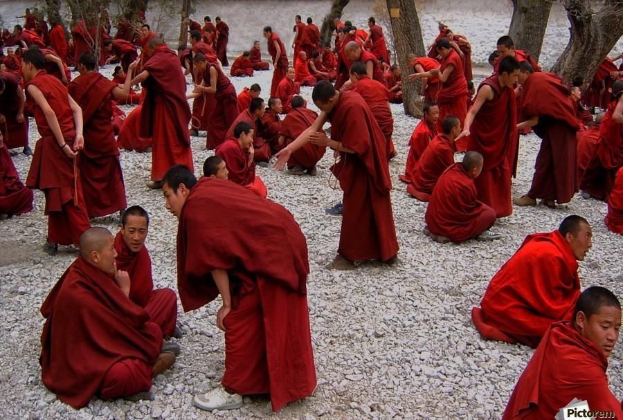 Monks debating  Print