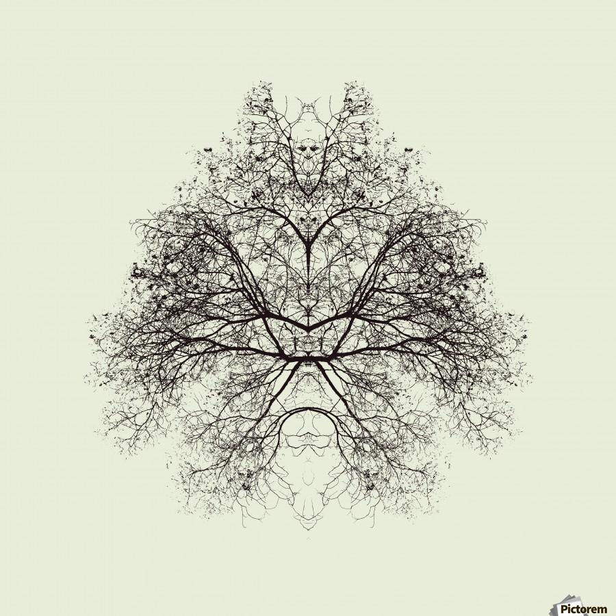Rorschach Test by Nadav Jonas   Print